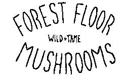 Forest Floor Mushrooms
